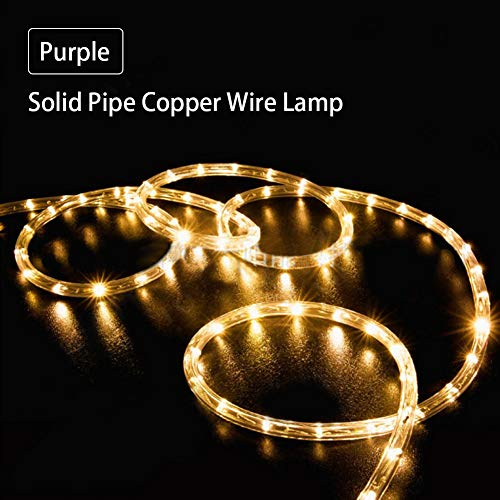 SJLED 100 LEDs Solar Lichtekette, 10M Lichtschlauch DIY Dekoration Kupferdraht für Garten Fest Weihnachten Hochzeit Gesamtlänge Außen & Innen Hängen Partzlichterkette Weihnachtsbeleuchtung (Warmweiß)