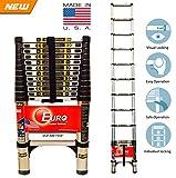 [Sale] Euro Telescopic Aluminium ladder 3.2 mtr (10 feet) - Stores at 2.9 feet - Made in USA - Ultra Portable - Reinforced rungs