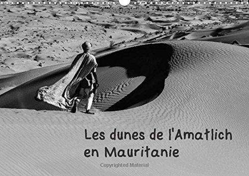 Les dunes de l'Amatlich en Mauritani...