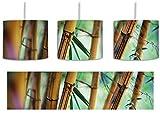 Alter Bambus Wald inkl. Lampenfassung E27, Lampe mit Motivdruck, tolle Deckenlampe, Hängelampe, Pendelleuchte - Durchmesser 30cm - Dekoration mit Licht ideal für Wohnzimmer, Kinderzimmer, Schlafzimmer