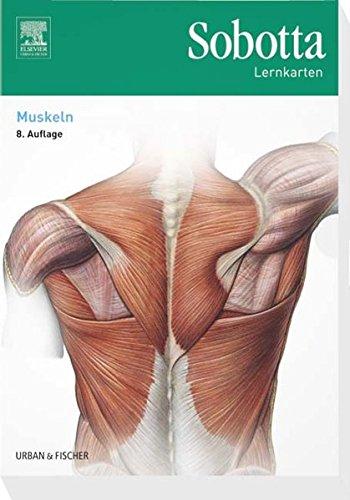 Sobotta Lernkarten Muskeln