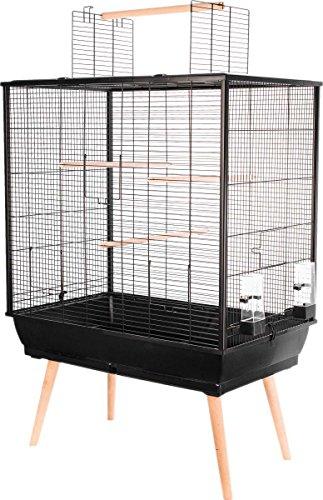 meilleure cage oiseau