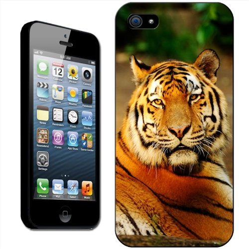 Tigres Coque arrière rigide détachable pour Apple iPhone modèles, plastique, White Tiger Reflecting In Water, iPhone 5C Siberian Tiger Lying In Sun