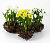 artplants Künstliche Narzisse im Reisig Nest, gelb, 22 cm, Ø 14 cm - Kunstblumen gelb/Narzisse im Topf - 3