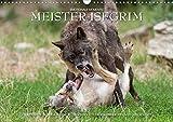 Meister Isegrim (Wandkalender 2020 DIN A3 quer): Zauberhafte Bilder aus dem Leben des Wolfes. Ein Kalender von Ingo Gerlach GDT. (Monatskalender, 14 Seiten ) (CALVENDO Tiere)