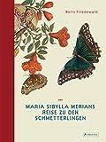 Maria Sibylla Merians Reise zu den Schmetterlingen - Boris Friedewald