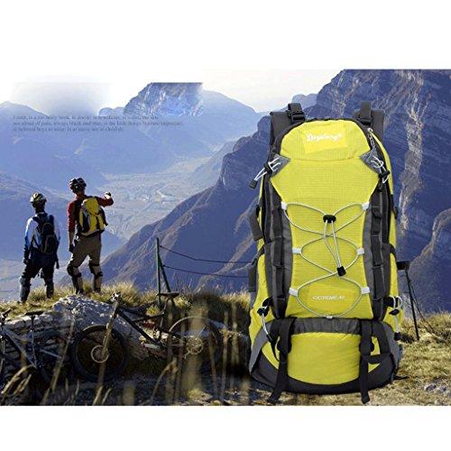 Pathfinder Pionier im Freien Bergtasche Tasche Rucksack Wandern regen Abdeckung montierbare Tragesystem zu senden Gelb