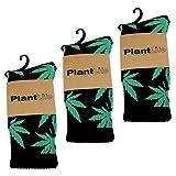 3x Plantlife Socken in universeller Größe // Blitzversand aus deutschem Lager // schwarz/grün