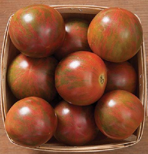 Famous Hungarian Artisan Tomato \