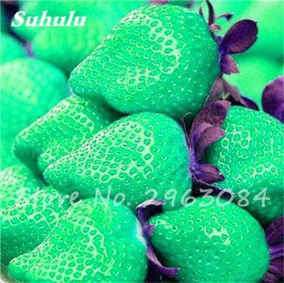 Sementes da Fruta 200 pcs / sac couleur rares fraises graines, les graines de fruits tropicaux, Graines Pot Bonsai fruits pour jardin usine 13