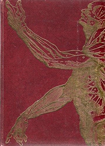 Les merveilles de notre corps - Mécanisme des fonctions et règles d'or de la santé - Tome 1