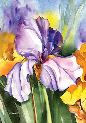 """Toland Home Garden Iris Field Garten Flagge, Textil, Purple/Blue/Green/Yellow, House-L-28 x 40"""""""