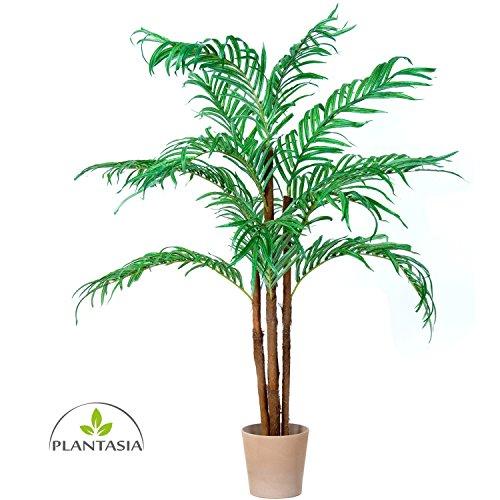 Kokospalme, Echtholzstamm, Kunstpalme, Kunstpflanze, Kunstbaum – 160cm - 2