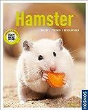 Hamster (Mein Tier)