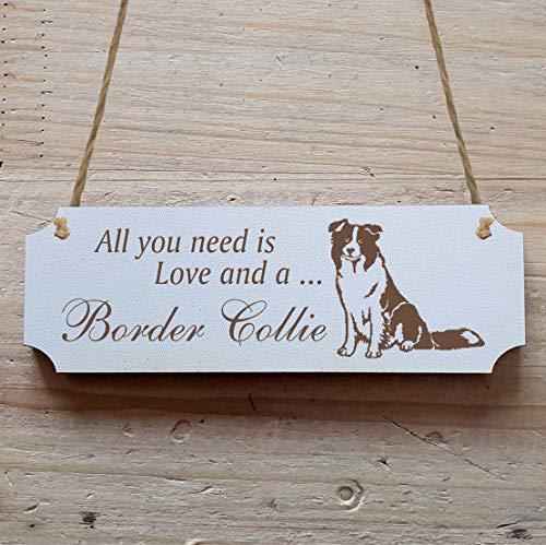 Schild « BORDER COLLIE » 15 x 5 cm - Dekoschild Holzschild Türschild - Hund Haustier -