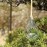 Newdreamworld da uomo, 27,9cm altezza, pendenti in vetro globo in possesso di corda/vetro da appendere a forma di goccia terrario/appeso piante succulente in vetro supporti per giardinaggio