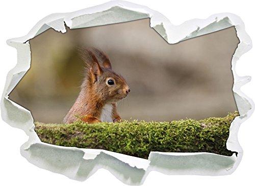 scoiattoli cattivi dietro tronco, di carta 3D autoadesivo della parete formato: 92x67 cm decorazione della parete 3D Wall Stickers parete decalcomanie