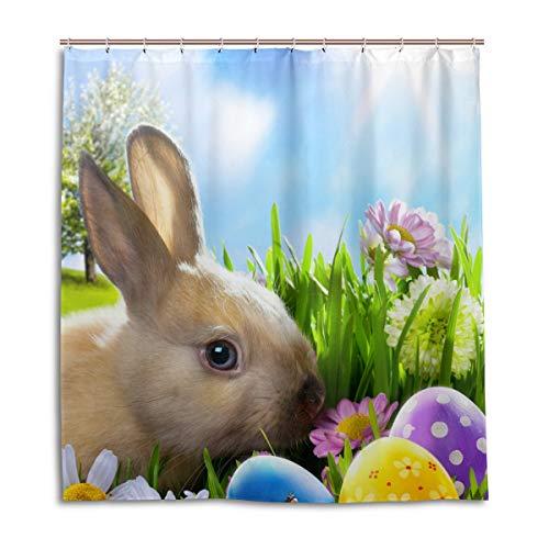 e Osterhase Hasen Eier Blume Wasserdicht Schimmelresistent Badevorhang Badezimmer Home Decor 168 x 182 cm mit 12 Haken ()