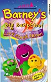 Picture Of Barney: Barney's Big Surprise! His All New Live Stage Show [VHS]