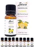 100% reines Ätherisches Zitrone Öl Therapeutische Grad Duftöl Zitronenöl für Aromatherapie, Massage, Wellness, Aroma Diffuser, Duftlampe 10 ml