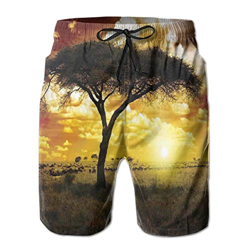 6e53d79551 Mens Beach Shorts Swim Trunks,Single Tree At Dreamy African Sunset with  Dark Dramatic Clouds