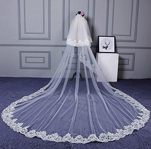 Veil Braut Schleier Kathedrale Langer Schwanz Elfenbein Weiß Hochzeit ZubehöR Spitze Stickerei Kante Doppelschicht TüLl Mit Kamm -