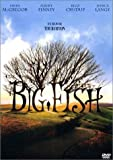 Big fish | Burton, Tim. Réalisateur