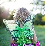 Trullala Feenkleid grün mit Flügeln, Feenkostüm, Größe: S (2-4 Jahre)