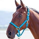 Shires Topaz 387 - Bozal para caballos de nailon, azul, Pony