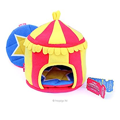 HAYPIGS Guinea Pig Toys and Accessories - Circus Themed Fleece HIDEY HUT Guinea Pig House - Guinea Pig Hideaway… 1