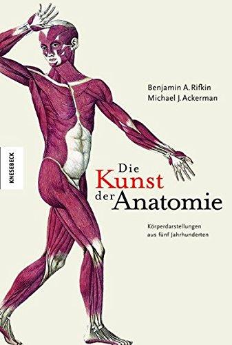 Die Kunst der Anatomie: Körperdarstellungen aus fünf Jahrhunderten - Kalender Anatomie