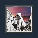 Paper Castles [Vinyl LP]