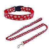 Petilleur Set Hundeleine und Hundehalsband für Weihnachten und Neujahr Hunde Leine und Halsband Einstellbar in Nylon (Schneeflocke)