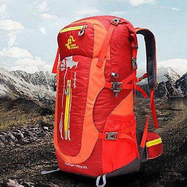 50 L Wandern Tagesrucksäcke Radfahren Rucksack Rucksäcke Camping & Wandern Freizeit Sport Reisen Bergsteigen ReiseCamping & Wandern Green