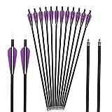 Toparchery 12er 32 Zoll Pfeile für Recurvebogen, Langbogen oder Compoundbögen Carbonpfeile mit Spinewert ca 350 für Bogen und Bogenschießen