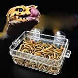 Keepart Reptile Feeder Anti-escape Food Bowl Turtle Lizard Worm Live Food Container