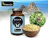 Hanoju Baicalin Extrakt 300 mg 90 Kapseln - Nahrungsergänzungsmittel aus Baikal Helmkraut 100% natürlich
