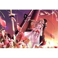 Sword Art Online SAO ALO Japón Anime Gamuza de tejido de seda agradable–Póster de pared (36x 24pulgadas 20x 13inch)