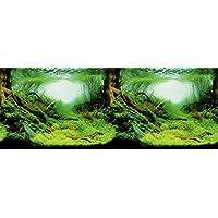 Trixie - Fondo Decorativo Acuario Doble, 0.1KG