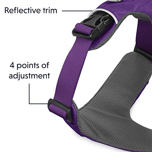Ruffwear All Day Adventure Dog Harness, Small Breeds, Adjustable Fit, Size: Small, Tillandsia Purple, Front Range Harness, 30501-501S