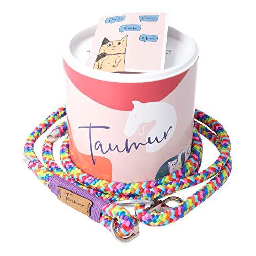 City Leine - bunt/lila - Leine für mittelgroße Hunde aus robustem PPM ()