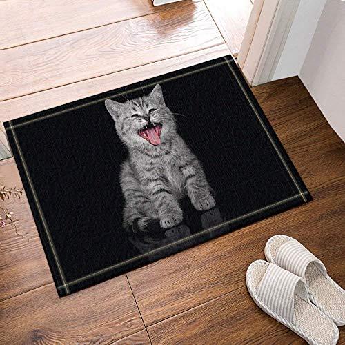 dsgrdhrty Geheimnisvolle Schwarze Hintergrundgraue Schwarze Katze rote Zunge Schwarze Augen rutschfeste Badezimmer-Dusche-Küchen-Samt-Karikatur-HD-Landschaftsinnenkissen