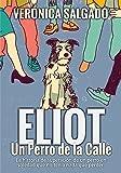 Eliot un perro de la calle: La historia de superación de un perro en soledad que no tenía nada que perder