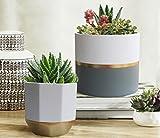La Jolíe Muse Blumentöpfe Übertöpfe Keramik 2er Set, Klassisches Design Weiß & Gold, Rund & Achteckig Ø16.5 x H15 cm für Innen - 5