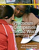 Practicum Companion for Social Work: Integrating Class and Fieldwork, The (Connecting Core Competencies)