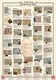 empireposter - Educational - Bildung - Genius of Leonardo da Vinci - Größe (cm), ca. 68x98 - Poster, NEU - Version in Englisch - Beschreibung: - Bildung, Lernposter - englische Version -