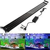 greensun LED Lighting Lampada Led Lampade Illuminazione Acquario Acquario per bordo vasca, copertura morsetto lampada luce regolabile