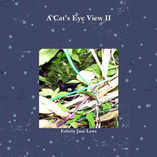 A Cat's Eye View II