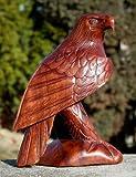 Schöner Adler Holz Tier Steinadler Greif Vogel Eagle Adler05