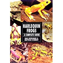 Harlequin Frogs